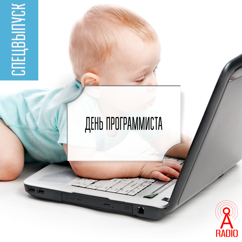 denp2015_800x800